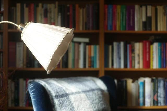 křeslo, lampa, velká knihovna